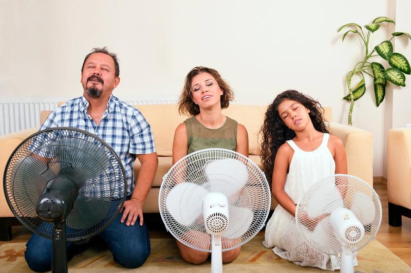 family-using-fans